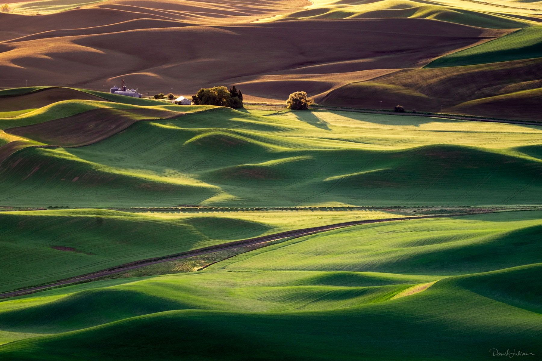 Palouse_Steptoe_Butte_Sunrise-1570
