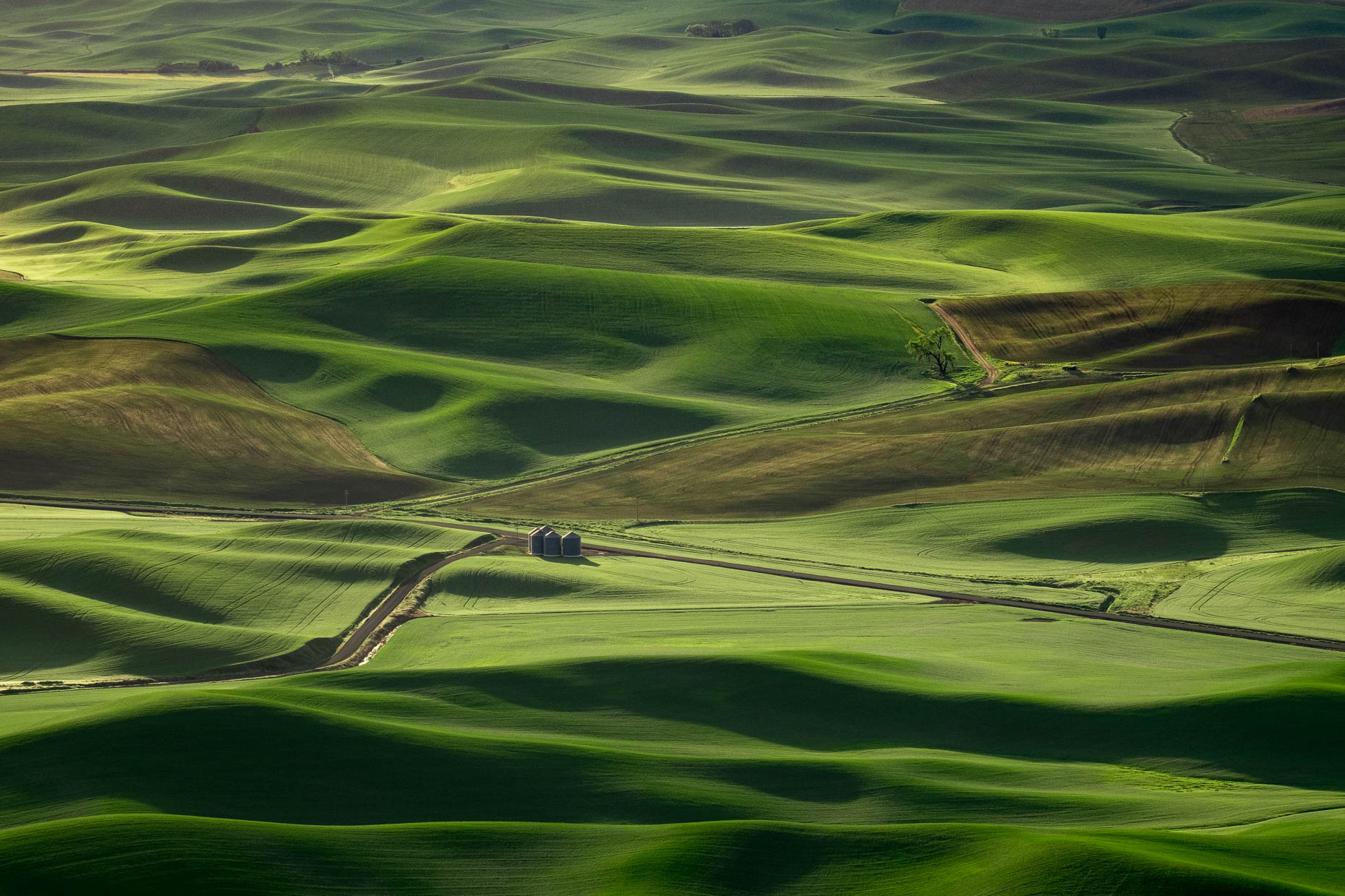 Palouse_Steptoe_Butte_Sunrise-1687-APF1860px