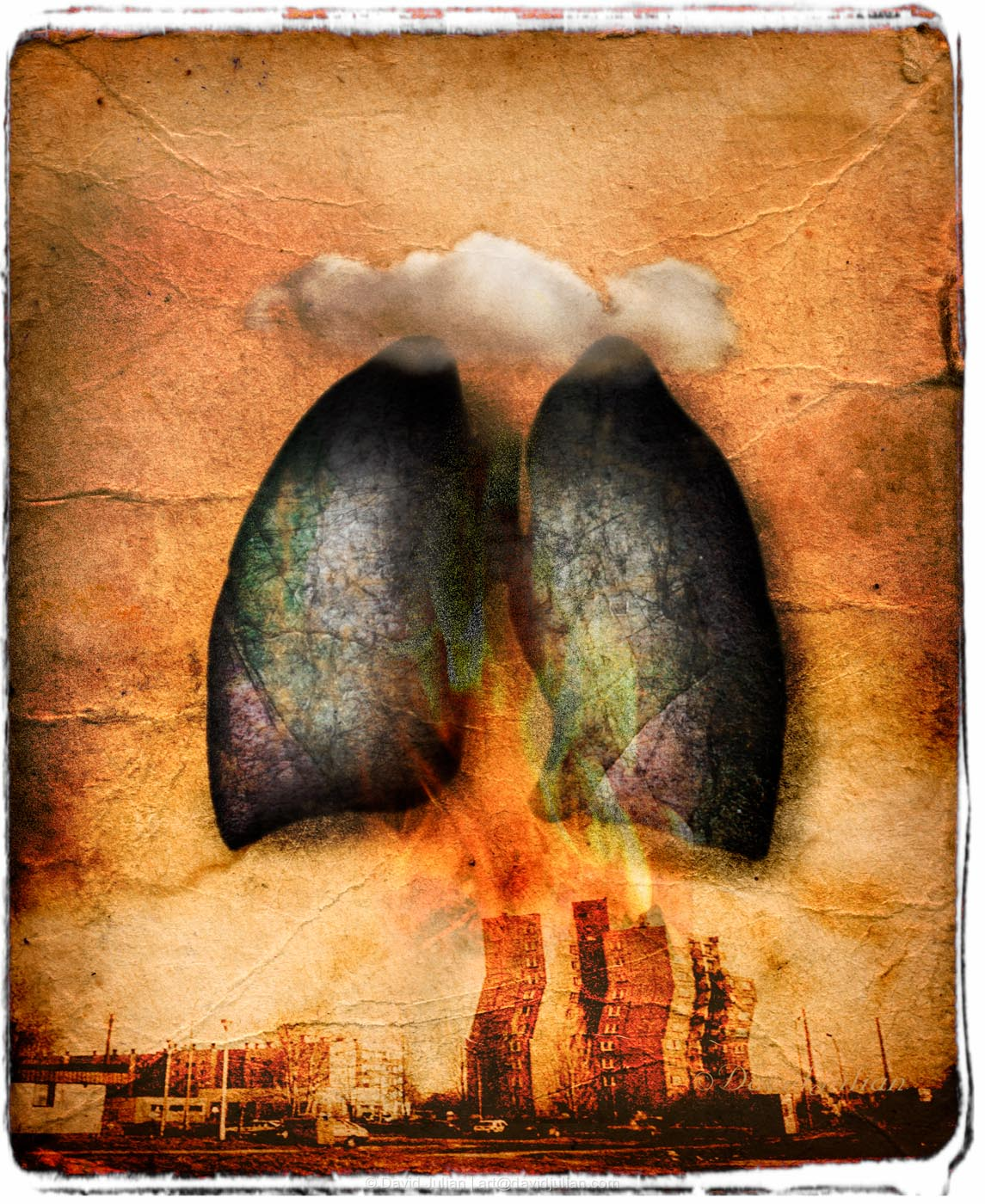 lungs_enviro_damage.jpg